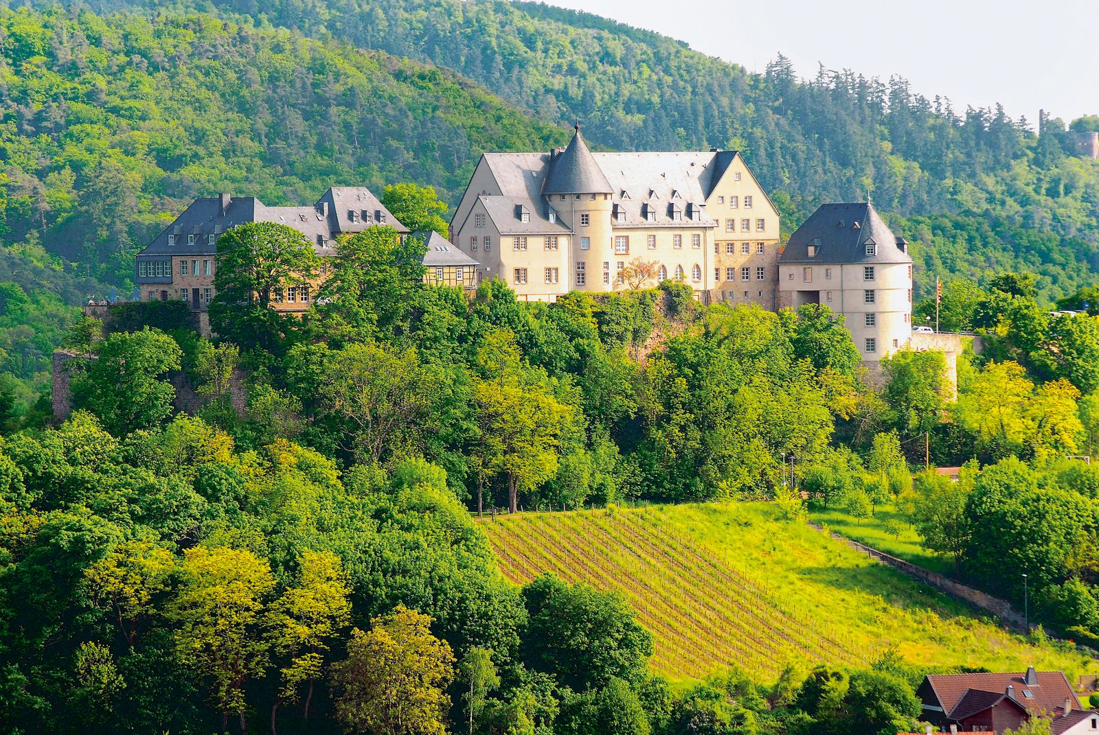 Rheinland-Pfalz: Die Nahe-Region lockt Touristen mit